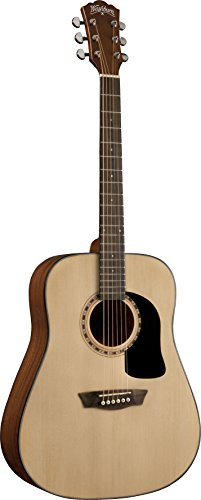 Washburn Apprentice D5 with Case, Acoustic Guitar