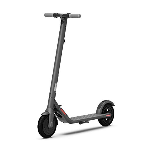 Segway Ninebot E22 Electric Kick Scooter, Lightweight and Foldable,...