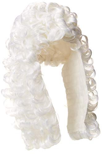 Rubie's mens Retro Judge Wig Party Supplies, White, One Size US