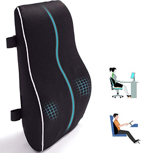 Lumbar Support Pillow for Office Chair Car Memory Foam Back Cushion for...