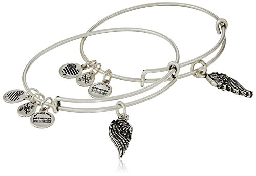 Alex and Ani 'Path of Symbols' Wings Set of 2 Silver Expandable Wire Bangle...