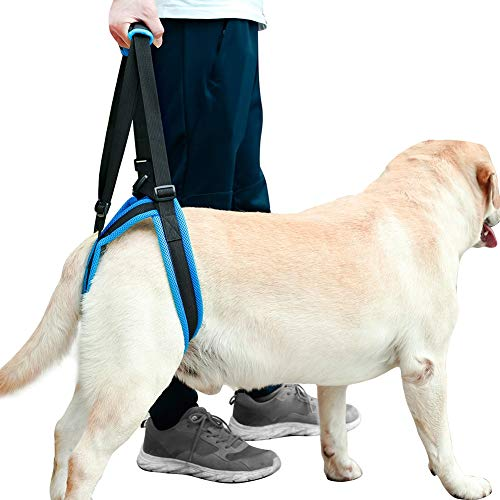 ROZKITCH Pet Dog Support Harness Rear Lifting Harness Veterinarian Approved...