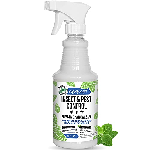 Mighty Mint - 16oz Insect and Pest Control Peppermint Oil - Natural Spray...