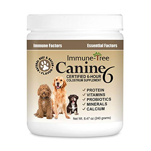 Immune-Tree Bovine Colostrum for Dogs & Puppies   Immune System Booster...