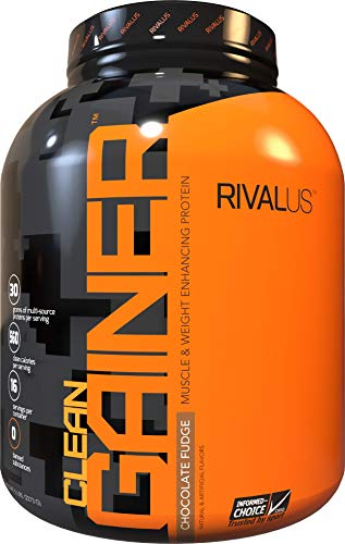 Rivalus Clean Gainer - Chocolate 5 Pound - Delicious Lean Mass Gainer with...