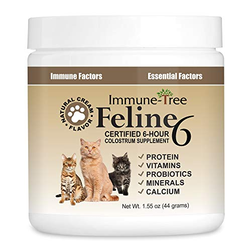 Immune-Tree Colostrum Probiotic Powder for Cats   Supplement for Cat...
