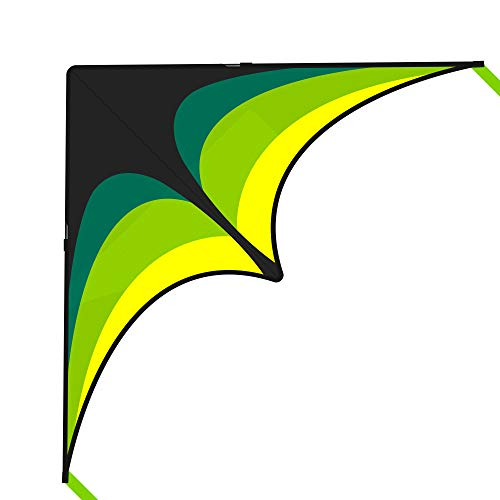 Mint's Colorful Life Delta Kite for Kids & Adults, Extremely Easy to Fly...