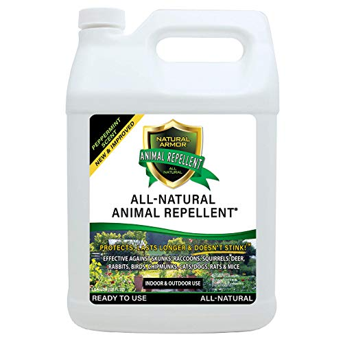 Natural Armor Animal & Rodent Repellent Spray. Repels Skunks, Raccoons,...