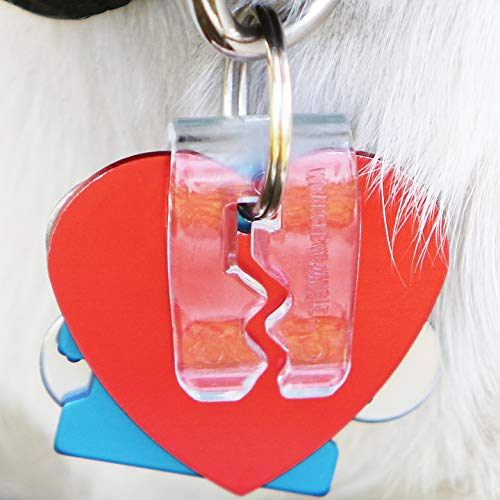 SilenTags Pet Tag Silencer Clip It On, Jingle's Gone! -Clear
