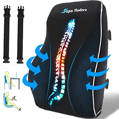 Lumbar Support Pillow for Office Chair and Car Seat Back Support Memory...
