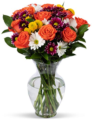Benchmark Bouquets Life is Good Flowers Orange, With Vase (Fresh Cut...