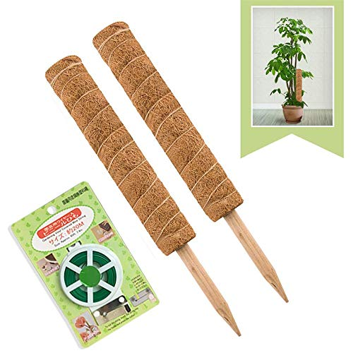 JOYSEUS 30 Inch Moss Pole for Climbing Plants - 2 Pack 15 Inch Coir Totem...