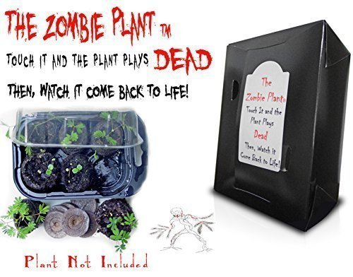 Zombie Plant Grow KIT - (Touch It and It Plays Dead!)- Comes Back to Life...