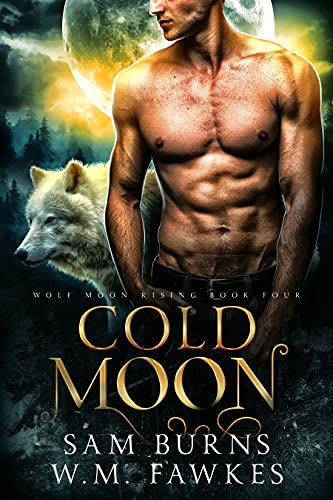 Cold Moon (Wolf Moon Rising Book 4)