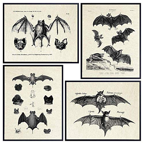 Bats Wall Decor - Vintage Retro Hipster Goth Art, Home or Room Decoration -...