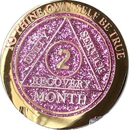 2 Month AA Medallion Reflex Pink Glitter Gold and Silver Plated Chip