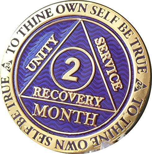 2 Month AA Medallion Reflex Purple Gold Plated 60 Day Chip