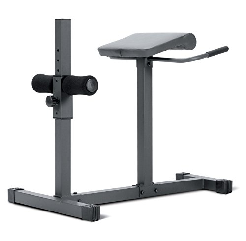 Are You Thinking About Performing Some Serious Abs Workouts The Roman Chair Is Something That Need It An Exercise Instrument For Working On Plural