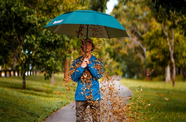 falling leaves on the umbrella hold by a teenager